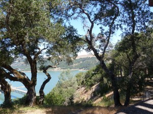 Lake Sonoma overlook