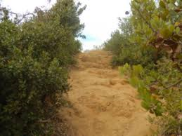 rugged trail Griffith Park